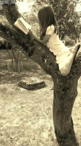 Lesen im Baum