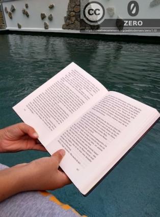 Lesen am Poolrand