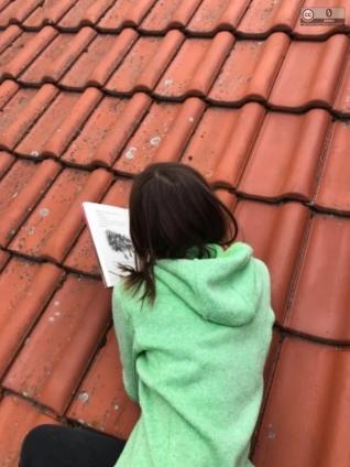 Lesen auf dem Dach